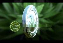 www.thegreennotes.es/semillas