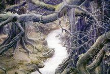 John R.R. Tolkien / by Massimiliano MariaGrazia