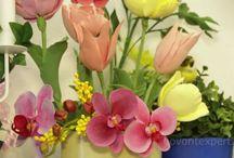 Цветы и прочее из полимерной глины. Лепка