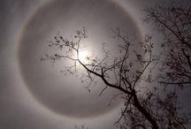Natura: Luna / Nature: Moon