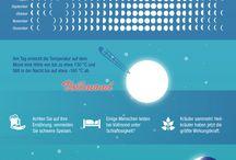 Mondkalender Infografik