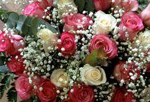 limonium arte floral