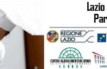 ITALIE-FRANCE GROUP ACTIVITIES / Italie-France Group Activities : France - Montecarlo - Italy Activités Italie-France Group : France - Montecarlo - Italie