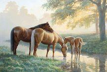 ART - Persis Clayton WEIRS
