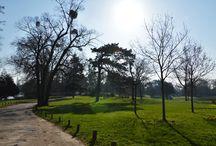 LE CHALET EN HIVER / le chalet en hiver avec quelques rayons de soleil..