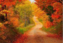 podzim (autumn)
