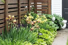 bordures jardin