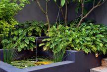 zieleń i architektura