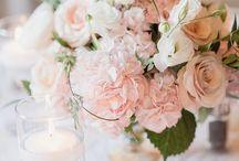 blush pink and wineyard wedding