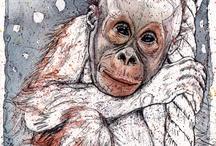 Orangutan art