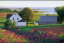 Prince Edward Island / by J. Chrissy Sawka Johnson