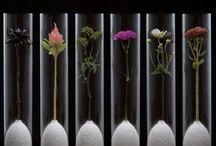 Flower packaging design
