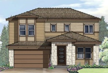 TRI Pointe Homes / Terrain features home designs from Lennar, TRI Pointe, and Century Communities. / by Terrain Castle Rock