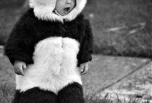 PANDAS!!! / by Melanie Gerringer