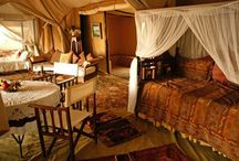 Decadent Glamping / Camping in style.