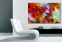 Mohka Floral Prints / A hand-picked selection of Mohka's floral canvas prints.