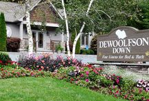 DEWOOLFSON down / DEWOOLFSON's own-make white goose down comforters, pillows & featherbeds #comforters, #down, #featherbeds, #USA, #whitegoosedown, #madeintheUSA
