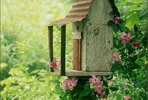 Bird Houses + Feeders / We are bird watchers and one of our favorite spots is on our property. We have several birdhouses. I love to paint them, nothing fancy / by Marcia Bowling Brake