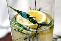 drinks / by Rachel Maher