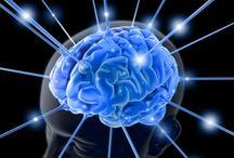 Brain & concentration