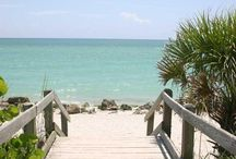 "Best of Venice Florida / Living in Venice is like living on a permanent vacation! Beach, Biking, Birds and a ""Take it Easy"" life style / by Joyce Keigher"