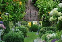 Dış Mekan bahçe