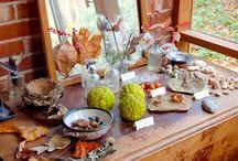 Inspiration: Nature Tables / by Seemi @ Trillium Montessori