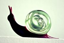 Glass figurine / Animaletti  in vetro lume
