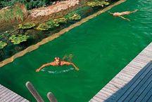 eco freindly pools