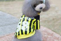 Baseball Dog Jacket