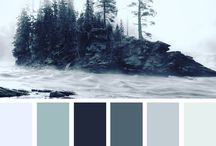 color palette's