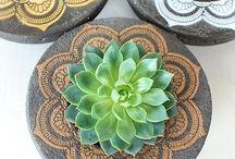 Room Redecoration: Plants