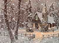 winter wonder / by Barbara simko