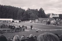 Longines FEI European Eventing Championships, Blair Castle 2015