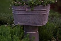 Garden Ideas / by Candy Hill