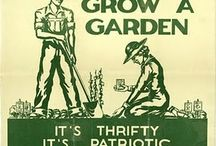 Gardening: Growing and Knowing / by Debra Collins