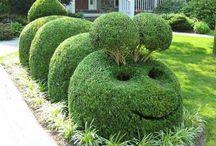Topiary Fun