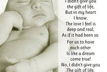 Adoption / by Kathy Forsyth