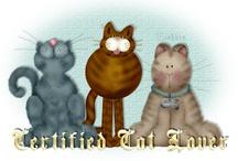Kitty Kitty / by Micki Kowalik