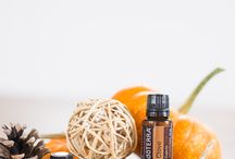 Diffusers home lifestyle