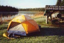 Camping / by Cristy Laya