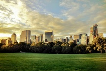 my favorite place / Central Park