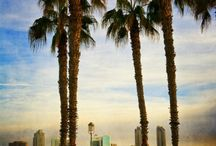 San Diego (California)