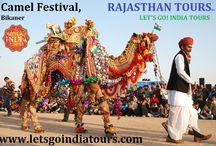 Camel Festival , Bikaner / Read blog on Camel Festival , Bikaner  http://letsgoindiatours.blogspot.in/2016/04/camel-festival-bikaner.html
