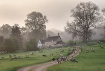 The beautiful Cotswolds / Living and working in the Cotswolds is a real privilege, here are some images that inspire us every day....