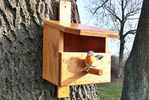 Budki lęgowe / Budka lęgowa to specjalnie przygotowana konstrukcja, wykonana z drewna i przeznaczona na gniazda, głównie dla ptaków. Budki lęgowe służą ochronie gatunkowej, sprzyjają bioróżnorodności, a wystawione w odpowiedniej ilości i proporcjach przywracają biorównowagę.