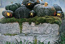Halloween ~ Outdoor Decor / by Cara Leeper