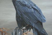 Raven Ideas
