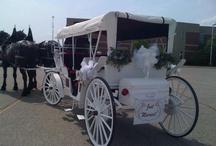 Limousines / Wedding Day Transportation