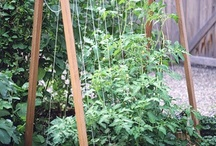 Gardens & Raised Bed Inspiration / DIY yourself garden projects, Raised bed ideas, rain gardens,  Inspiration. Midwest gardening / by Laura Gresk